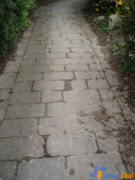path before washed